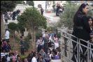 سبت النور في القدس وبيت جالا - 2011 - 1