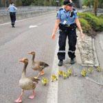 اثنين من ضباط الشرطة يوقفا حركة المرو...