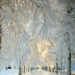 الشتاء مذهل في سويسرا