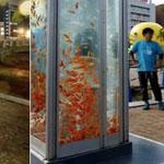 اليابان وفن ابداعي لكابينة الهواتف ال...