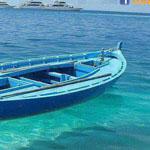 المياه النقية جداً - في جمهورية جزر فيجي