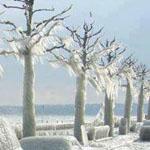 هكذا كان الشتاء بجانب البحر في رومانيا