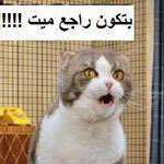 الحمام فين !!!:-)
