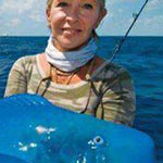 سمكة الباروت الزرقاء
