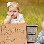 تستحق هذه الصورة اعجاب!!!