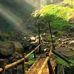 جسر الخيزران ....... اليابان