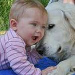 تدري الكلب يعرف هذا طفل ويلعب وياه يا...