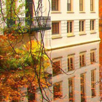 أحد الفنادق في هولندا !! شرفة مطلة على منظر الرائع