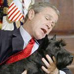 حزن بوش على كلبه فاق حزنه على ضحايا 11 سبتمبر!