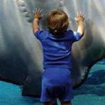 سمكة تضحك لطفل صغير يداعبها