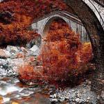 صورة طبيعية لفصل الخريف