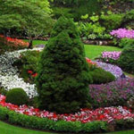 حدائق رائعة