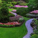 من اجمل الحدائق