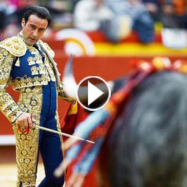 بالفيديو.. أصعب وأخطر الألعاب الرياضية في العالم