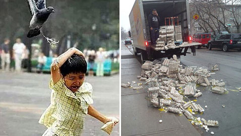 صور طريفة.. مواقف كارثية محرجة جدا لكنها  تثير الضحك
