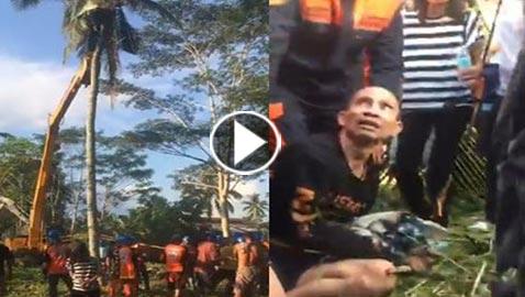 بالفيديو والصور.. رجل فليبني يعيش فوق نخلة لمدة 3 سنوات بسبب مشاجرة