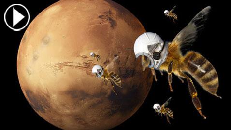 نحل روبوتي مستكشف يستعد لغزو المريخ