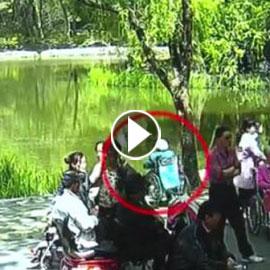 بالفيديو.. تسعينية على كرسي متحرك تسقط في بركة مياه