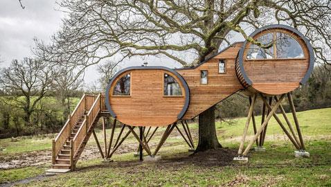 بالصور.. أول بيت على شكل شجرة في انجلترا