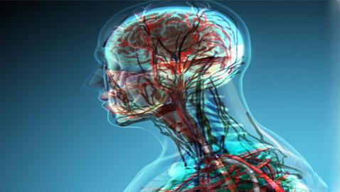 اليكم حقائق ومعلومات مذهلة وغريبة عن جسم الإنسان