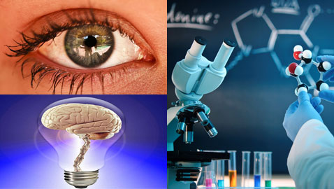 مجموعة حقائق مُشوقة خاصة بعلم الأحياء