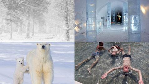 صور ستشعرك بالانتعاش والبرودة في مواجهة الحر الشديدة!