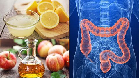 تعرفوا على الفوائد المدهشة لهذه الأغذية المنزلية السحرية في تنظيف القولون من السموم