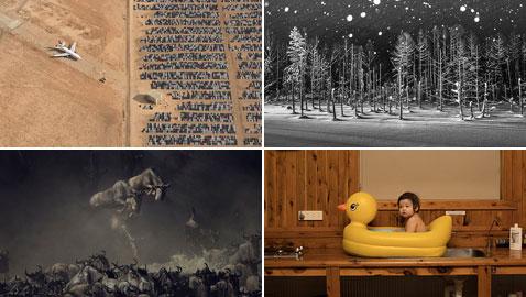 10 صور رائعة فازت بجائزة ناشيونال جيوغرافيك لعام 2018