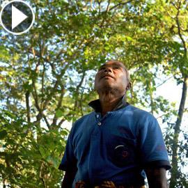 قصة رجل هندي حوّل صحراء إلى غابة مليئة بالحياة طوال 40 عاما