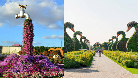 صور رائعة.. تعرفوا على الحديقة المعجزة في دبي