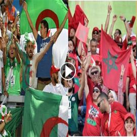 فيديو وصور: كيف احتفل الجمهور المغربي والجزائري بالفوز في كأس افريقيا؟