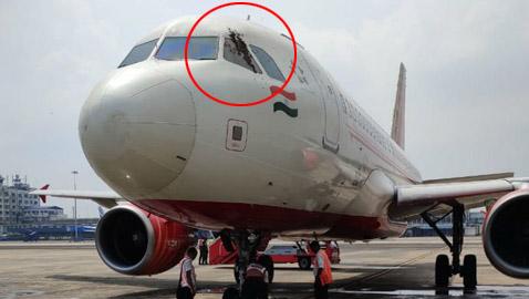 سرب من النحل يعيق إقلاع رحلة طيران هندية لساعات ويهاجم الموظفين!