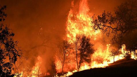 الحرائق تطوّق سيدني.. والوضع يخرج عن السيطرة بمناطق أخرى