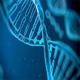 العلماء يكشفون عن أغرب العادات المنقولة وراثيا!