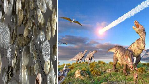 اكتشافات جديدة تثير الجدل حول كيفية انقراض الديناصورات
