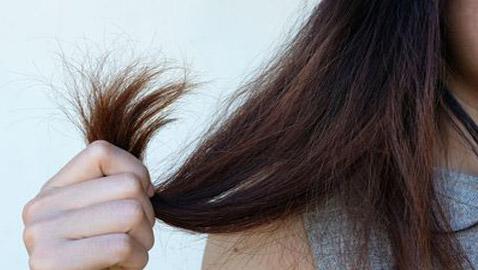 جفاف الشعر.. 5 علاجات منزلية سريعة وسهلة