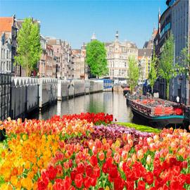 بالصور: إليكم أجمل الأماكن السياحية في أمستردام