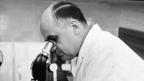 موريس هيلمان: العالم الذي أنقذ البشرية من أمراض مميتة و(ضاع اسمه)!