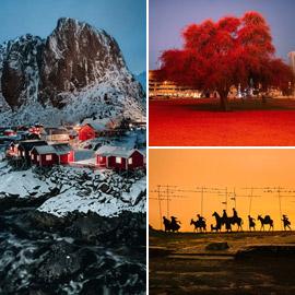 صور رائعة.. إليكم الفائزين في مسابقة التصوير بواسطة آيفون 11