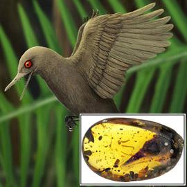 بالصور: اكتشاف أصغر الديناصورات في العالم.. وحجمه سيفاجئك!
