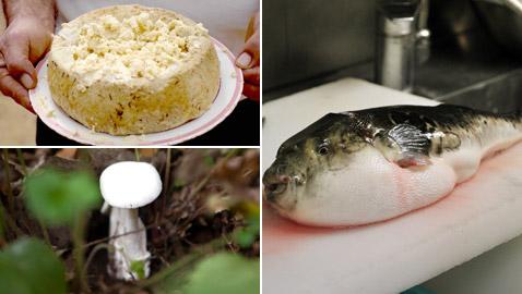 أسماك سامة وفطر قاتل.. إليكم أخطر أطعمة يأكلها البشر في العالم!