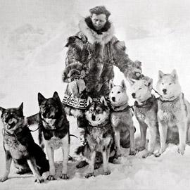 سباق الرحمة.. يوم أنقذ متزلجون وكلاب الأطفال من مرض قاتل!