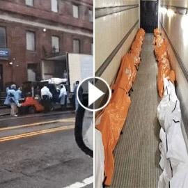 بسبب فيروس كورونا.. فيديو شاحنة الجثث يثير الذعر في نيويورك!