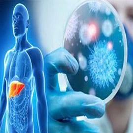 كيف يؤثر فيروس كورونا على الكبد؟.. هذا سر وفاة الأصحاء!