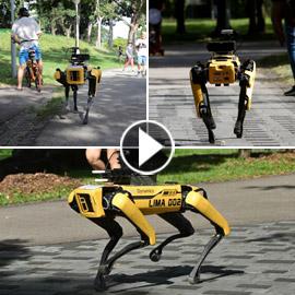 كلب آلي يتجول في متنزهات سنغافورة لحث الناس على التباعد الاجتماعي