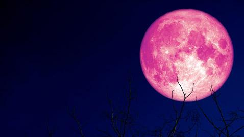 العالم يشهد ظاهرة قمر الفراولة.. تعرف عليها