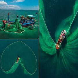 صور جميلة خلابة.. لوحات آسرة بألوان زاهية على صفحة المحيط!