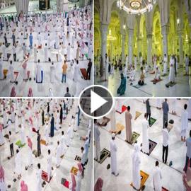 بالفيديو والصور.. المسجد الحرام يستقبل المصلين بعد 7 أشهر