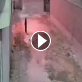 فيديو صادم: سيدة الملابس السوداء تخرج ليلا لتدفن اعمال سحر  ..