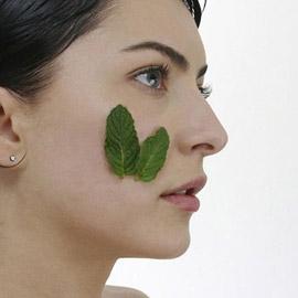 أهم فوائد استخدام النعناع لجمال بشرتك